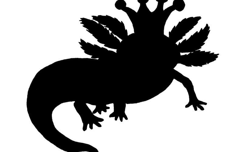 axolotlkoenig